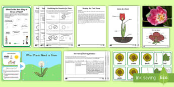 Growing Plants First Level Activity Stations Science Pack - Science, plants, labelling a plant, science games, plant games, science activity station, plants and