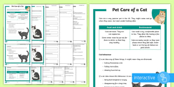 KS2 Pet Care of a Cat Differentiated Comprehension Go Respond  Activity Sheets - KS2 National Pet Month (April 2017), pet care, pets, cats, looking after a cat, reading comprehensio
