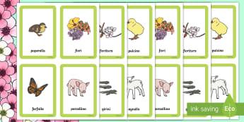 Primavera Gioco Memory Gioco da Tavola - gioco, da, tavola, memory, memoria, primavera, stagioni, giocare, italiano, italian, materiale, scol