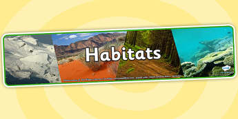 Habitats Photo Display Banner - habitats, photo display banner, display banner, display, banner, photo banner, header, display header, photo header, photo