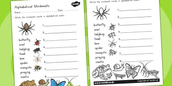Minibeasts Alphabet Ordering Worksheet - minibeast, sort, order