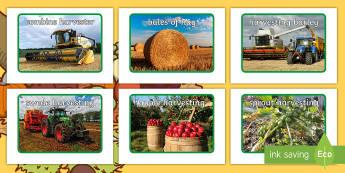 Harvest in Ireland Photo Pack - ROI Harvest, swedes, apples, combine harvester, autumn, harvesting, farming,Irish