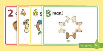 Parti del Corpo per Contare in 2 Poster - le, nostre, parti, del corpo, contare, numeri, scienze, matematica, italiano, italian, materiale, sc