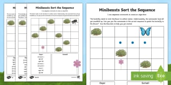 Minibeasts Sort the Sequence Differentiated Activity Sheet - worksheet, computing, program, algorithm, sequence, commands, plan, predict, coding, reorder, Minibe