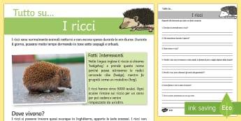 I Ricci Lettura Comprensiva - i, ricci, lettura, comprensiva, domande, scienze, autunno, habitat, leggere, elementari, italian, it