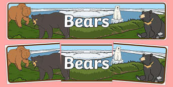 Bears Display Banner - Banner, bear, Display, Topic, Foundation stage, animals, polar bear, koala bear, brown bear, grizzly bear, sloth bear,  bear resources