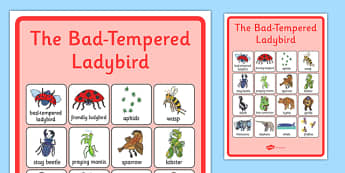 Vocabulary Poster to Support Teaching on The Bad Tempered Ladybird - vocab, visual aid