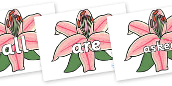 Tricky Words on Lilies - Tricky words, DfES Letters and Sounds, Letters and sounds, display, words