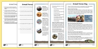 KS2 Armed Forces Day Differentiated Reading Comprehension Activity