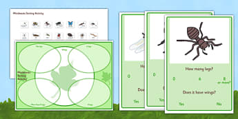 Minibeast Sorting Activity - minibeasts, minibeast sorting activity, minibeast legs sorting activity, how many legs sorting activity, how many legs