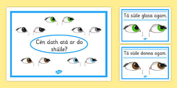 Eye Colour Posters Gaeilge - roi, gaeilge, eye colour, posters, display