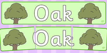 Oak Display Banner - tree, oak, display, banner, woods, header, forest