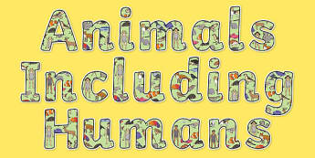 Animals Including Humans Display Lettering - animals including humans, display lettering, display, science lettering, science display, science display lettering