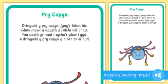 Incy Wincy Spider Display Poster Welsh - Welsh Second Language Songs and Rhymes, Incy Wincy Spider, Welsh Songs, Welsh., pry copyn, Pry Copyn