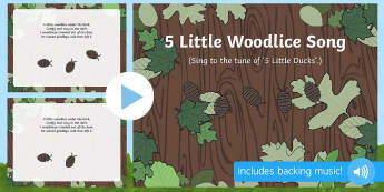 Five Little Woodlice Song PowerPoint - EYFS, Early Years, Key Stage 1, KS1, songs, music, minibeasts, insects, bugs, creepy crawlies, spide