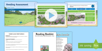 Year 4 Term 3 Poetry Reading Assessment Guided Lesson Teaching Pack - comprehension, SATS, KS2, read, guidance, assess,