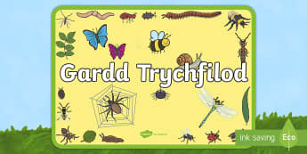Poster Arddangos Gardd Trychfilod - poster, arddangos, gardd, trychfilod, trychfil, ardal allanol,Welsh
