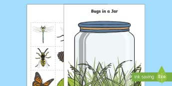 Bugs in a Jar Counting Activity - KS1 Maths, counting, addition, number recognition, bugs, minibeasts, insects