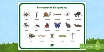 Le creaturine del giardino Vocabolario Illustrato - animali, insetti, ragno, aracnidi, lumaca, giardino, italiano, italian, materiale, scolastico