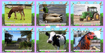 Farm Display Photo PowerPoint - powerpoint, power point, interactive, powerpoint presentation, farm photos, farm powerpoint, farm presentation, presentation, slide show, slides, discussion aid, discussion points