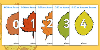 Numbers 0-20 on Autumn Leaves - Autumn, leaves,  foundation stage numeracy, Number recognition, Number flashcards, counting, number frieze, Display numbers, number posters, Autumn, seasons, autumn pictures, autumn display, leaves, acorn, conker, nume