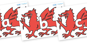 Phoneme Set on Welsh Dragons - Phoneme set, phonemes, phoneme, Letters and Sounds, DfES, display, Phase 1, Phase 2, Phase 3, Phase 5, Foundation, Literacy