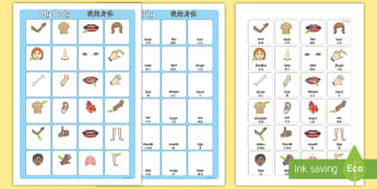 My Body Vocabulary Word and Picture Matching Activity Sheet English/Mandarin Chinese - vocabulary poster, poster, my body vocabulary, display poster, information poster, poster for displa