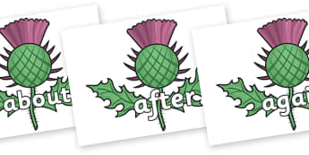 KS1 Keywords on Scottish Thistles - KS1, CLL, Communication language and literacy, Display, Key words, high frequency words, foundation stage literacy, DfES Letters and Sounds, Letters and Sounds, spelling