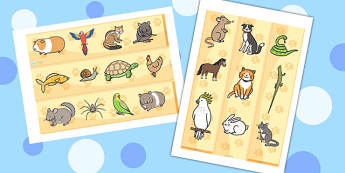 Pets Display Borders - Pet, Display border, border, display, pets, cat, dog, rabbit, mouse, guinea pig, rat, hamster, gerbil, horse, puppy, kitten, snake, chinchilla, snail, lizard, budgie