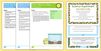 EYFS Jack and the Beanstalk Science Experiments Resource Pack - Jack and the Beanstalk, Science