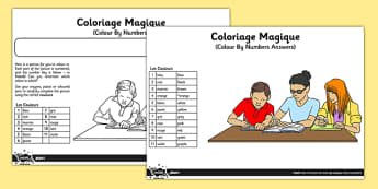 French Colariage Magique Activity Sheet - french, colour by numbers, colour, numbers, activity, worksheet