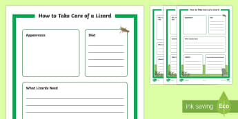 How to Take Care of a Lizard Fact File - Pets, pet, EYFS, KS1, take, care, look, after, family, member, members, vet, vet surgery, surgery, i