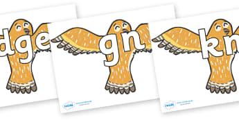 Silent Letters on Owls - Silent Letters, silent letter, letter blend, consonant, consonants, digraph, trigraph, A-Z letters, literacy, alphabet, letters, alternative sounds