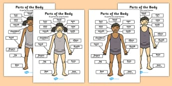 Parts of the Body A4 Portuguese Translation - portuguese, parts, body, a4, display