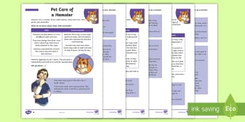 KS2 Pet Care of a Hamster Differentiated Fact File - KS2 National Pet Month (April 2017), fact file, differentiated fact file, reading, facts, non fictio