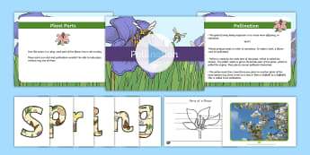 Spring Grades 3-5 Resource Pack  - Spring, First Day of Spring