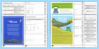 Year 2 Reading Assessment Term 3 Paper 2 - formative, summative, diagnostic, fiction, non-fiction, reading assessment