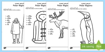 Polar Regions Colour by Number Counting Activity Sheet Arabic/English - Polar Regions Colour by Number Counting Activity Sheet - polar regions, colour by number, colour, nu