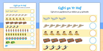 Cyfri yn Yr Haf Cymraeg - welsh, cymraeg, Counting worksheet, Summer, counting, activity, how many, foundation numeracy, counting on, counting back, holiday, holidays, seasons, beach, sun, flowers, ice cream, sea, seaside