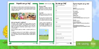 Darllen a Deall Gwahaniaethol yr Haf - Yr Haf, summer, colouring sheets, rhifau, traeth, beach, display lettering, posteri, ysgrifennu, sum