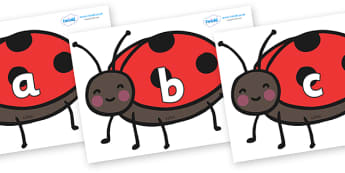 Phase 2 Phonemes on Ladybirds - Phonemes, phoneme, Phase 2, Phase two, Foundation, Literacy, Letters and Sounds, DfES, display
