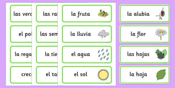 Growth Topic Word Cards Spanish - spanish, Plant, Growth, Word Card, Topic, Foundation stage, knowledge and understanding of the world, investigation, living things