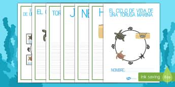 El ciclo de vida de una tortuga marina Cuadernillo