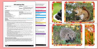 An Autumn Walk EYFS Adult Input Plan and Resource Pack - seasons, weather, planning