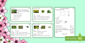 Frühlingsquark Rezept - Frühling, Kräuter, Quark, Petersilie, Schnittlauch, Dill, Essen, Kochen, Rezept, recipe, spring, c