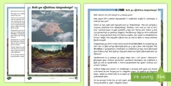 Taflen Gwybodaeth Ysgrifennu Berswadiol Digoedwigo'r Fforest Law - fforest law, coedwig, glaw, amason, fforestydd, yssgrifennu, perswadiol, sbardun, daearyddiaeth, Ama