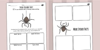 Charlotte's Web Spider Research Activity Sheet- stories, books, read