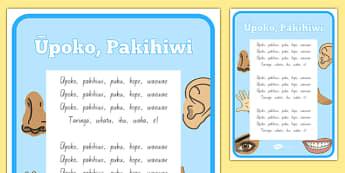 Te Reo Māori Head and Shoulders Song