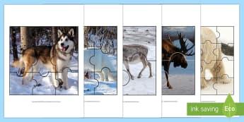 Arctic Animals Jigsaw Activity - The Arctic, Polar Regions, north pole, south pole, explorers, puzzles, activity, game