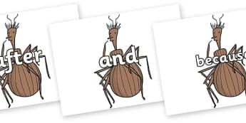 Connectives on Miss Spider to Support Teaching on James and the Giant Peach - Connectives, VCOP, connective resources, connectives display words, connective displays